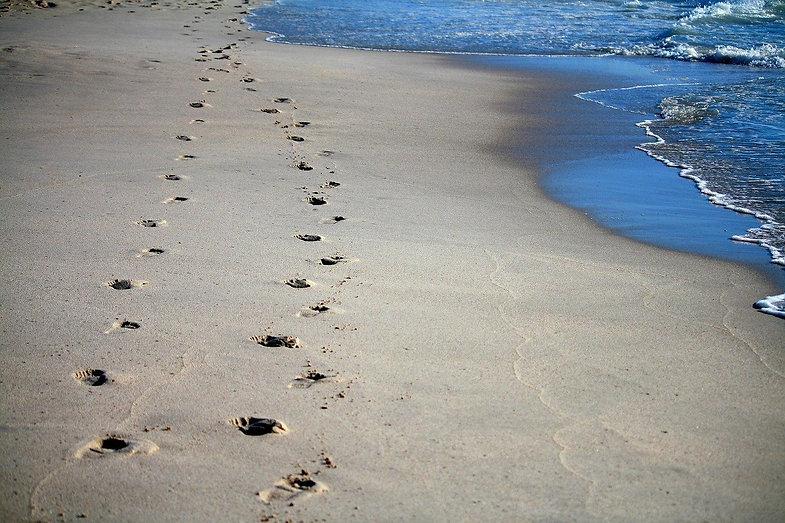 footprints-456732_1280.jpg