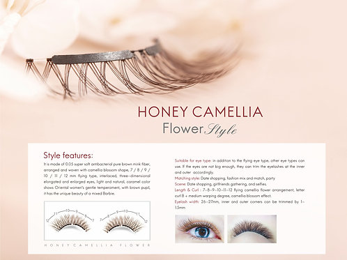 Honey Camellia 蜜糖山茶花