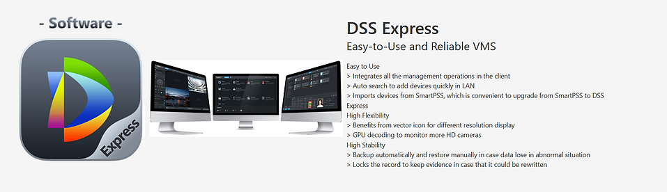 DSS Express.png