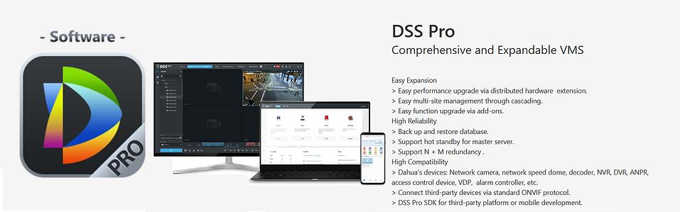 DSS Pro.png