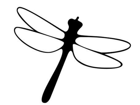 Digital Marketing for DragonFly Lighting