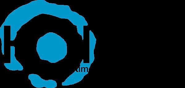 Holloid-Logo.png