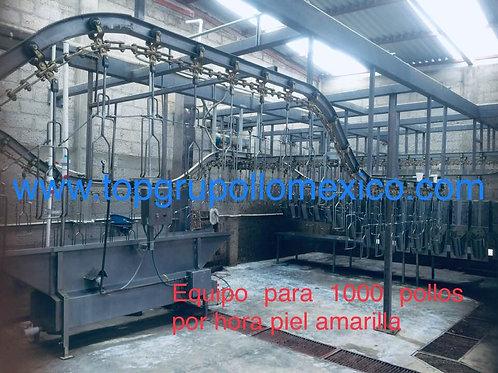 PLANTA DE PROCESO DE 500 A 800 AVES POR HORA