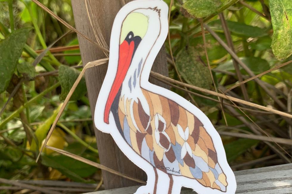 OBX Pelican