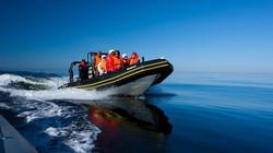 Suvepäevad  ja meresafari