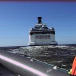 Tallink safari