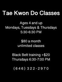tae kwon do class.jpg
