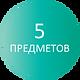 5 предметов.png