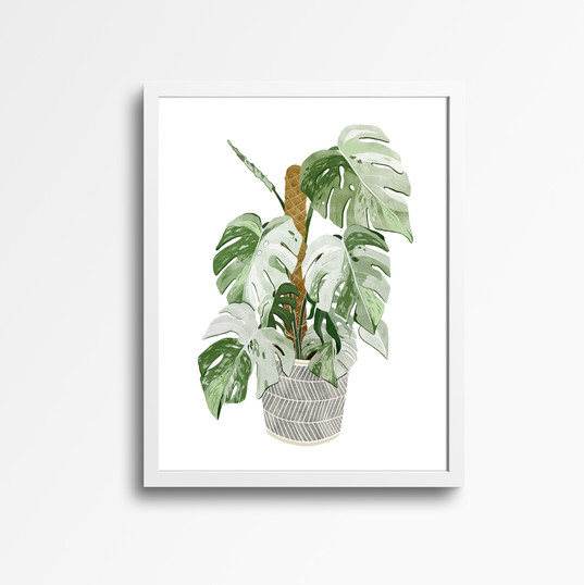 monstera white frame.jpg