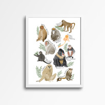 primate print white frame.jpg