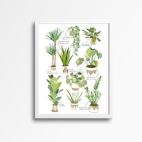 house plant print white frame.jpg