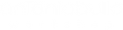 abw logo_bianco_11-2019-01.png
