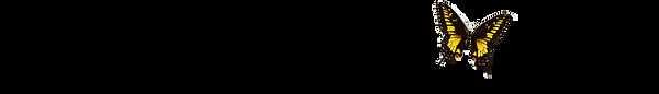 PBI-Header-1.png