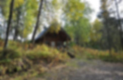 Hide a way Cabin - Daniels Lake Cabins/Kenai Peninsula, Alaska/Vacation Rentals