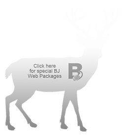 White_Deer_BJicon.png