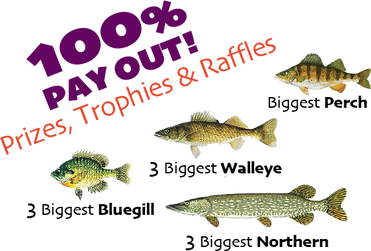 BigFish_100%.png