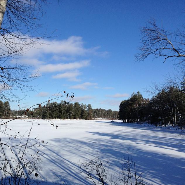 Winter at Wittig's