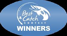BigChillBTN_winners.png