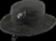 NHS_hat.png