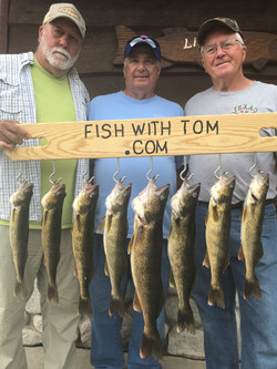 Another Walleye Limit