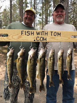 Limit of Walleyes
