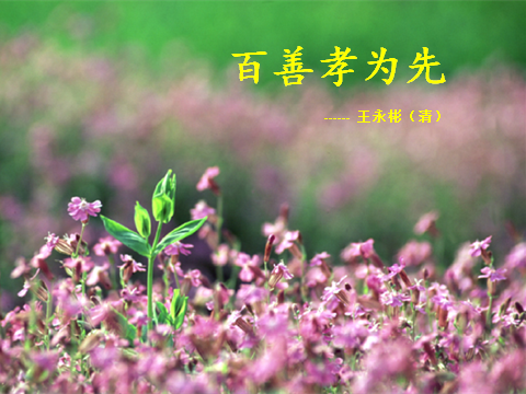 Picture11(百善孝为先).png