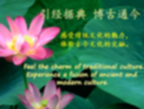 Picture11(引经据典).png