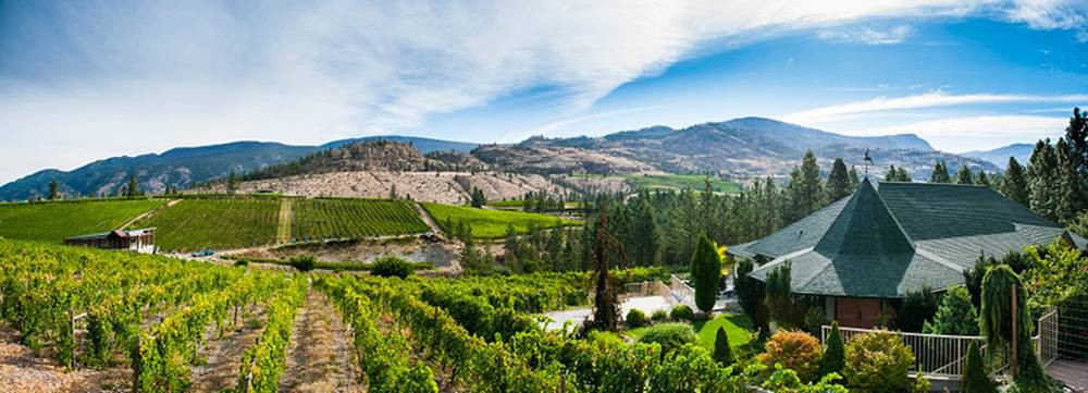 Stags Hollow Winery luxury wine tour departuresxdean