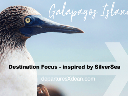 Galápagos Islands - a destination focus
