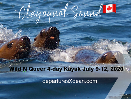 Wild N Queer 4-Day Clayoquot Sound Kayak Expedition