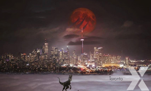 Toronto Raptors is the 2019 NBA Champions We The North Canada