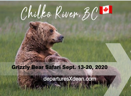 Explore BC - Grizzly Bear Safari