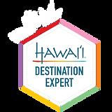 Hawaii Destination Expert Dean Nelson Personal Travel Mgmt an Ensemble Travel Group