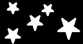PAX Star logo design.png