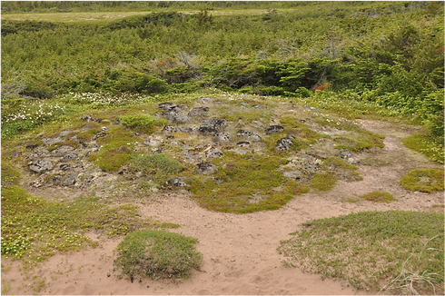 L'Anse Amour Burial Mound.png