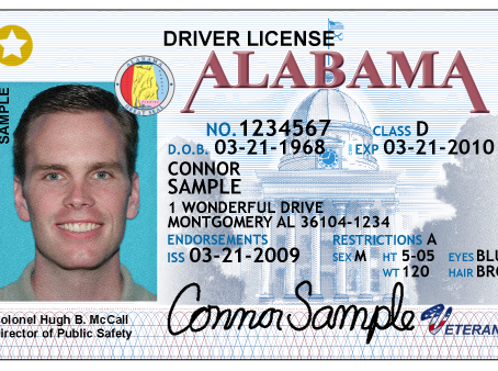Easy Access to Alcohol through Fake IDs & Shoplifting