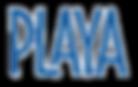 Paya%20Logo%20from%20web_edited.png
