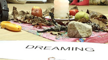 Dragon dreaming - seminar u Vrmdži