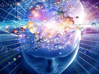 Neuronske veze