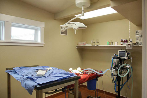 Modern surgical suite