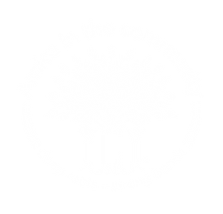 Amica in the community_Primary Logo_OUTL