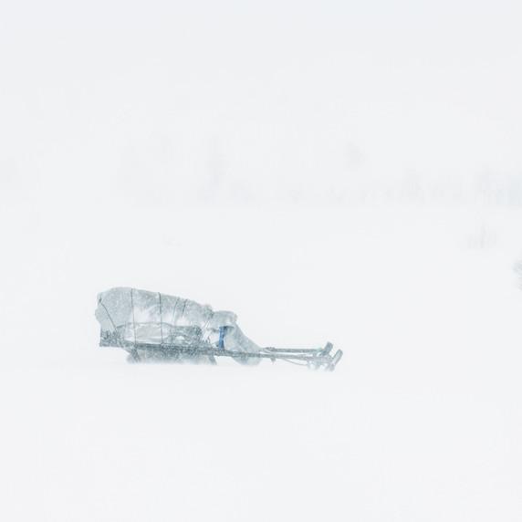 Sibérie - CV03 par Corinne Vachon