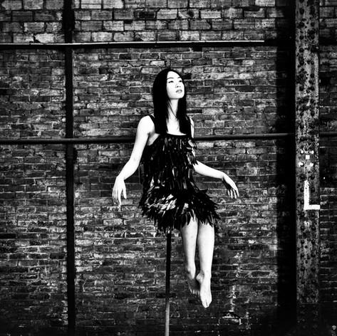 Bird - OG14 par Olivier Goy