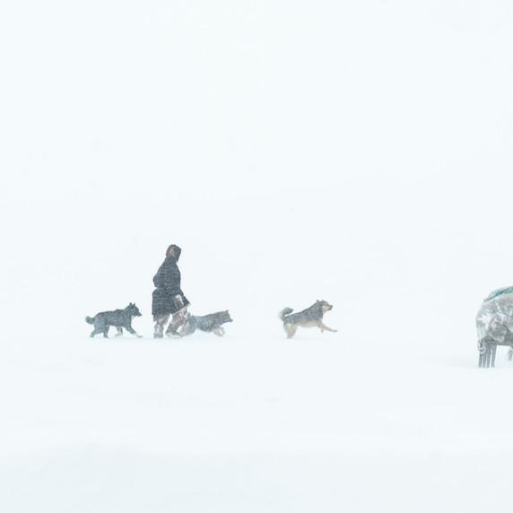 Sibérie - CV07 par Corinne Vachon