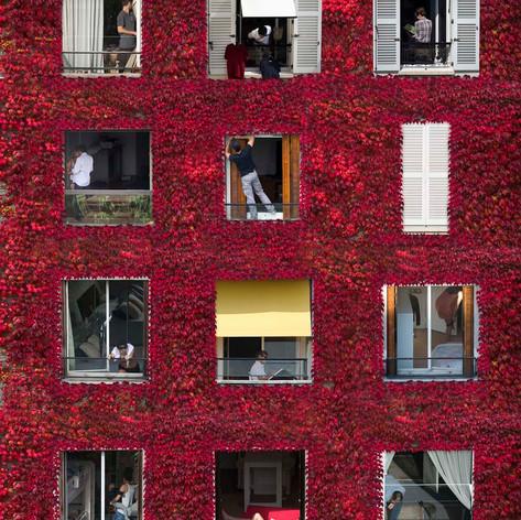 Windows - MW03 par Mathieu Walter