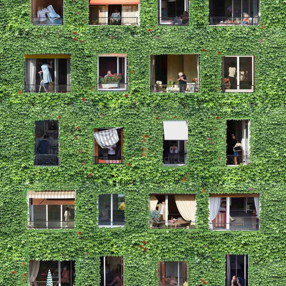 Windows - MW02 par Mathieu Walter