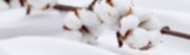 Chemise anti-tâche INDUO lille, tissu anti transpiration INDUO lille, tissu anti transpiration INDUO lille, chemise anti transpirante INDUO lille, chemise anti transpiration INDUO lille, prestige bespoke à lille, chemise sur mesure, chemise antitache, chemise de luxe lille, chemise haut de gamme, chemisier grande taille lille, chemise grande taille lille, costume sur mesure lille, Entoilage traditionnel lille, entoilage semi traditionnel lille, entoilage de veste lille, entoilage complet lille, costume sur mesure lille, veste sur mesure lille, costume de luxe lille, costume haut de gamme lille, vêtement grande taille lille, costume grande taille lille, costume de luxe lille, costume haut de gamme lille, pantalon sur mesure lille, pantalon grande taille lille, costume de marié lille, tenue de marié lille, chemisier haut de gamme lille, chemisier de luxe lille,