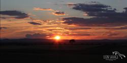 Duddo Sunset
