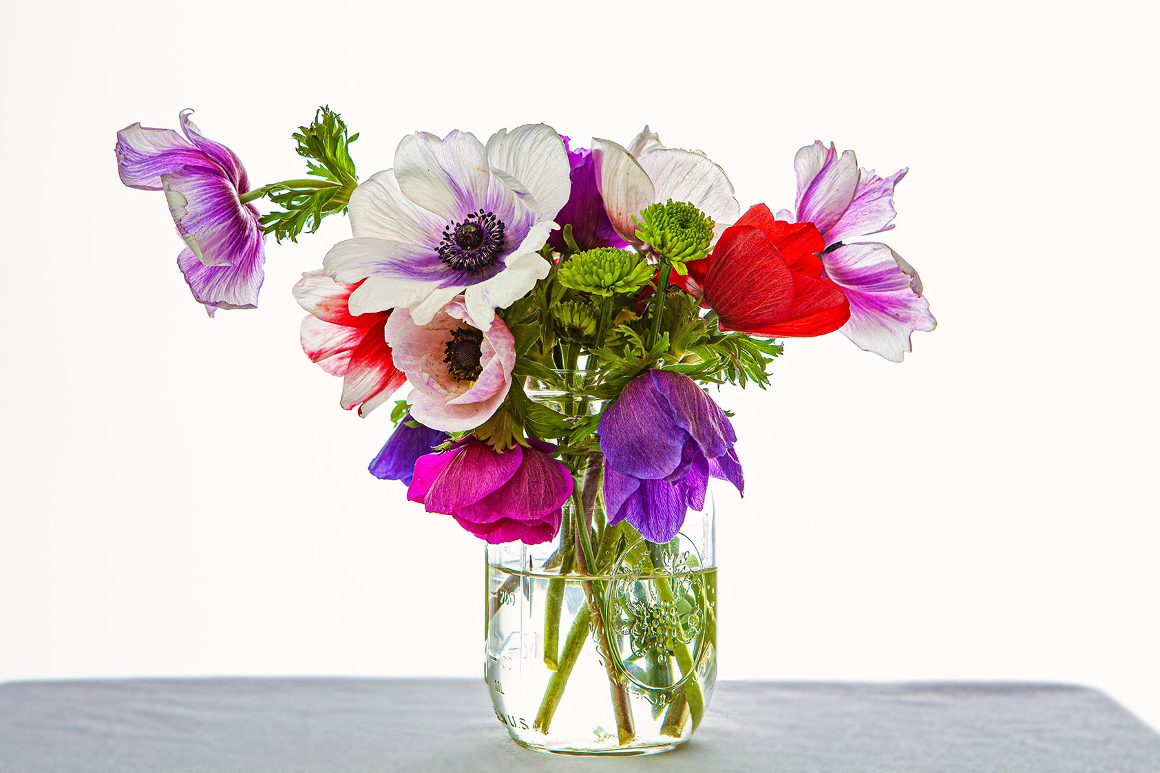 web_Floral_IMG_3452_2