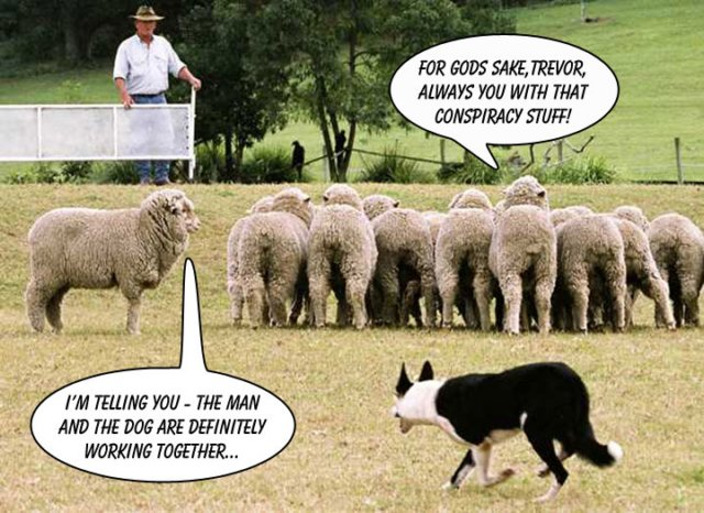 CONSPIRACY CARTOON SHEEP N DOG